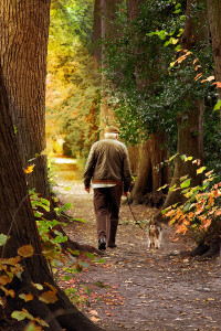 Elderly man walking dog in park